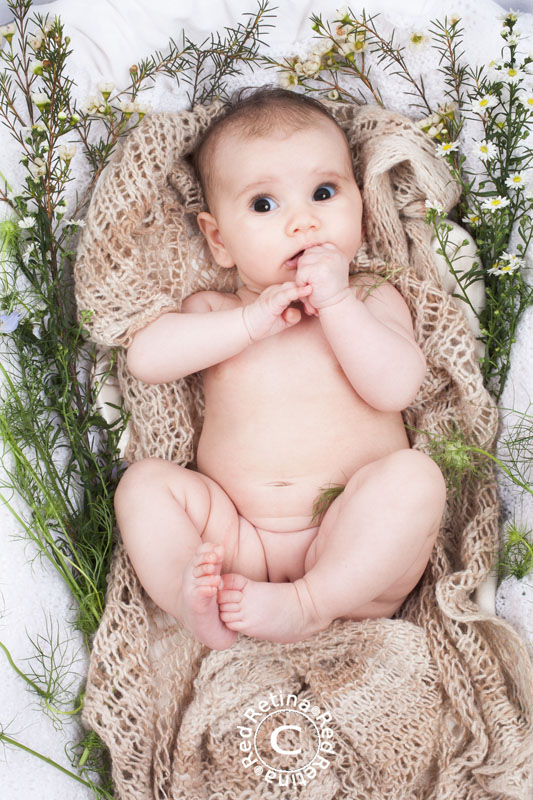 Baby-sage-117