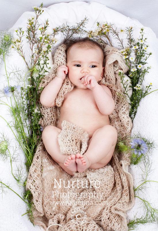 Baby-sage-128