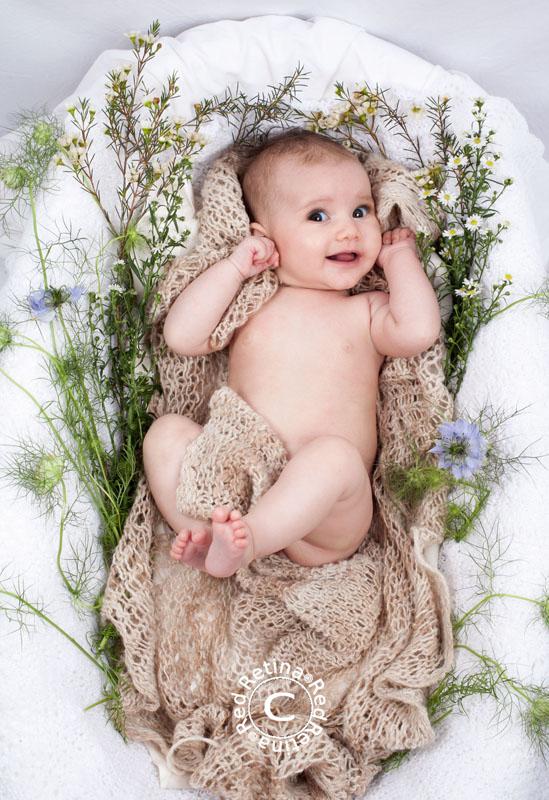 Baby-sage-129